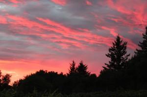 SunsetLG